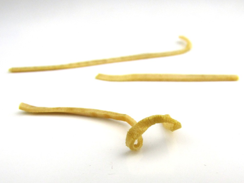 rubber-band-deterioration-1